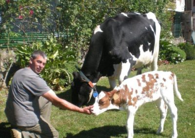 Ferme de la Casole_Red Holstein